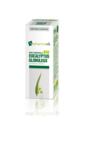 Huile essentielle Bio Eucalyptus Globuleux