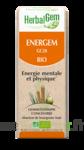 Herbalgem Energem Solution buvable bio Fl cpte-gttes/30ml