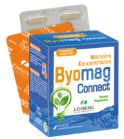 Lehning Byomag Connect Gélules B/60