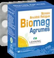 Lehning BIOMAG Comprimés à croquer agrumes B/90