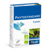Pileje Phytostandard - Cassis 20 gélules végétales