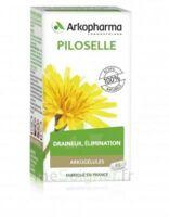 Arkogélules Piloselle Gélules Fl/45