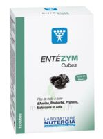 Entezym Cube à mâcher équilibre flore intestinale B/12