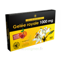 OLIGOROYAL Gelée royale 1000 mg