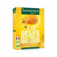 Santarome Bio Gelée royale 1500 Solution buvable 20 Ampoules/10ml