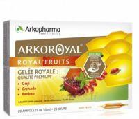 Arkoroyal Royal'Fruits Gelée royale Goji Grenade Baobab Solution buvable 20 Ampoules/10ml