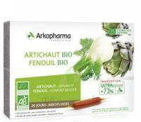 Arkofluide Bio Ultraextract Artichaut Fenouil Solution buvable 20 Ampoules/10ml