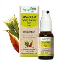 Rinalgem Respiration Spray buccal GC29 Bio Spray/15ml