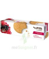 BISCUITS FRUITS ROUGES *20