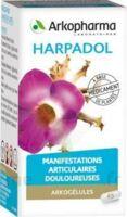 ARKOGELULES HARPAGOPHYTON Gélules Fl/150