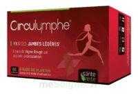 Santé Verte Circulymphe Triple Actions B/60