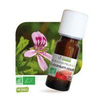Huile essentielle Géranium rosat BIO 10ml