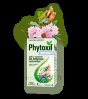 Phytoxil Immunité Gélules B/40