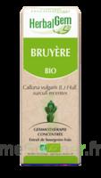 HERBALGEM Bruyère Macérat bio
