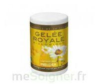 Ineldéa Nutri Expert Gelée Royale Bio