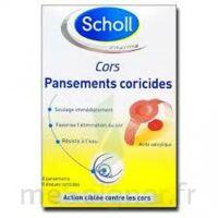 Scholl Pansements coricides cors