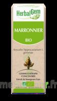 Herbalgem Marronnier Macérat bio 30ml