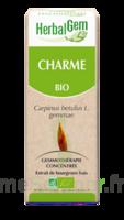 Herbalgem Charme Macérat bio 30ml