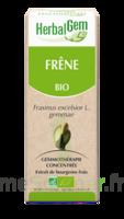 Herbalgem Frêne Macérat bio 30ml