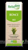 Herbalgem Ronce Macérat bio 30ml