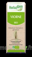 Herbalgem Viorne Macérat bio 30ml