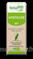 Herbalgem Myrtillier Macérat bio 30ml