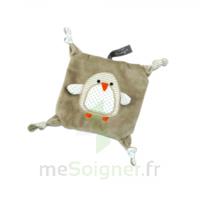 Soframar Fashy Bouillotte Little Stars Pingouin carré déhoussable