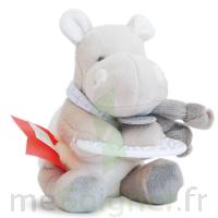 Coffret Hochet et Anneau de dentition Hippo