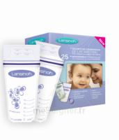 Lansinoh Sachet congélation lait maternel B/25