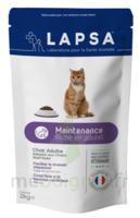 Lapsa croquette chat adulte - maintenance - 2kg