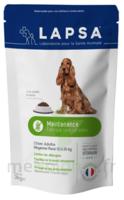 Lapsa Maintenance Croquette chien moyenne race Sachet/3kg