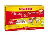 Superdiet Ginseng Gelée royale Protect Bio Solution buvable 20 Ampoules/15ml