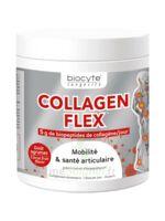 Biocyte - Collagen flex B/30