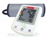 Torm BP3NZ1 autotensiomètre électronique bras