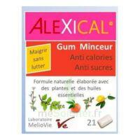 Alexical Gum Minceur Anti calories Anti sucres B/21