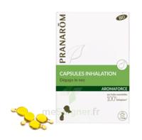 Aromaforce Caps inhalation bio B/15 + Inhalateur