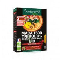Santarome Bio Maca 1500 Tribulus Ginseng Gingembre Solution buvable 20 Ampoules/10ml