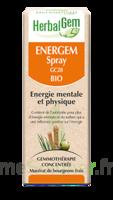 Herbalgem Energem Solution buvable bio Spray/15ml