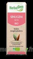 Herbalgem Sinugem Solution buvable bio Spray/15ml