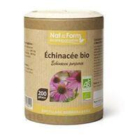 Nat&Form Eco Responsable Echinacea Bio Gélules B/200