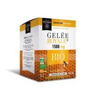 Dayang Gelée royale 1500 mg BIO 20 ampoules