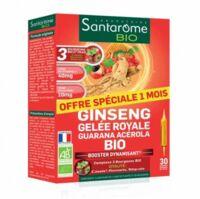 Santarome Bio Ginseng Gelée royale Guarana Acérola Solution buvable 30 Ampoules/10ml