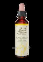 Fleurs de Bach® Original Hornbeam - 20 ml