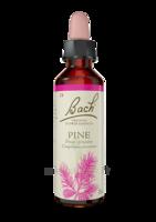 Fleurs de Bach® Original Pine - 20 ml