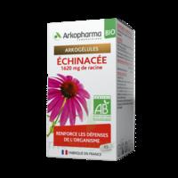 ARKOGELULES Echinacée Bio Gélules Fl/45
