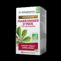 Arkogélules Marronnier d'Inde Bio Gélules Fl/45