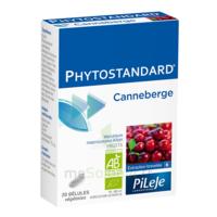 Pileje Phytostandard - Canneberge 20 gélules végétales