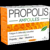 3 CHENES PROPOLIS Solution buvable 10 Ampoules/10ml