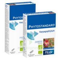 Pileje Phytostandard - Harpagophytum 60 gélules végétales