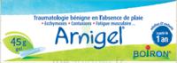 Boiron Arnigel Gel T/45g